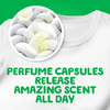 Gain Blissful Breeze Liquid Laundry Detergent perfume capsules release amazing scent all day!