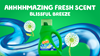 Gain Blissful Breeze Liquid Laundry Detergent with amazing fresh scent