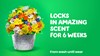 Gain Blissful Breeze Liquid Laundry Detergent locks in amazing scent for 6 weeks